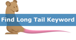 how-to-find-long-tail-keywords-tutorial