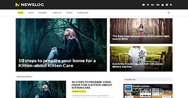 NewsLog-Blogger-Template